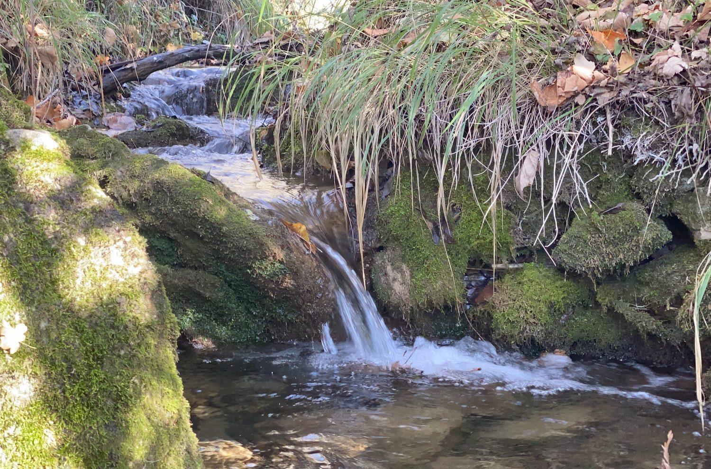 Durante il nostro weekend in trekking percorreremo Il canyon della riserva del Balzo Nero che è pieno di piccoli corsi d'acqua da guadare