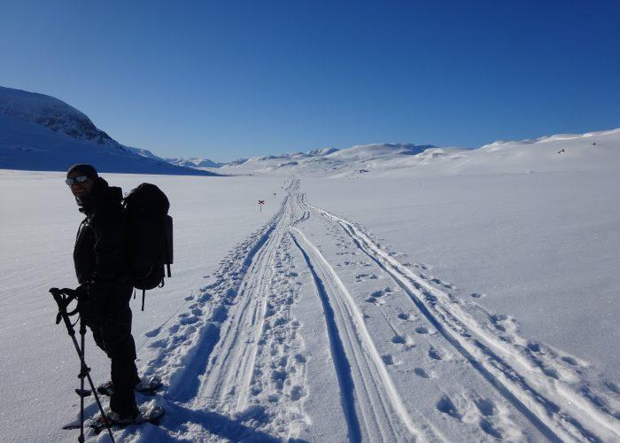 Trekking in Lapponia Svedese con le ciaspole di Maldavventura