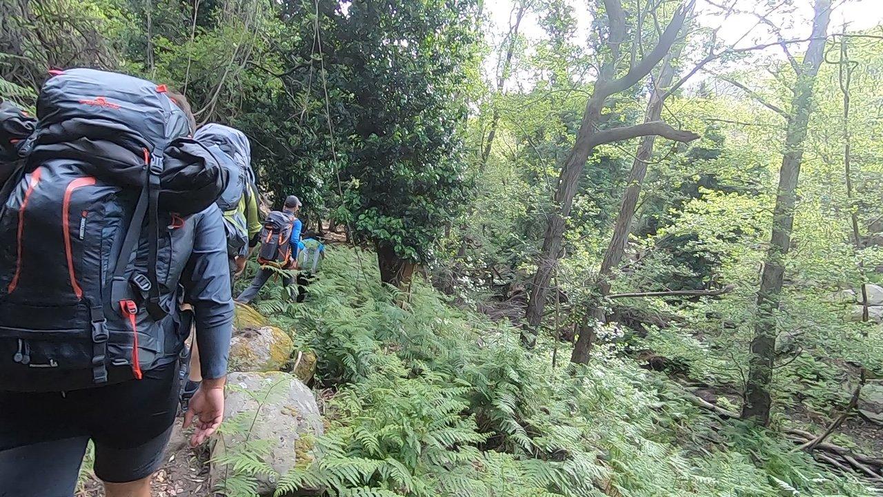 Il gruppo maldavventura del trekking all'isola d'Elba nella giungla della valle di Pomonte