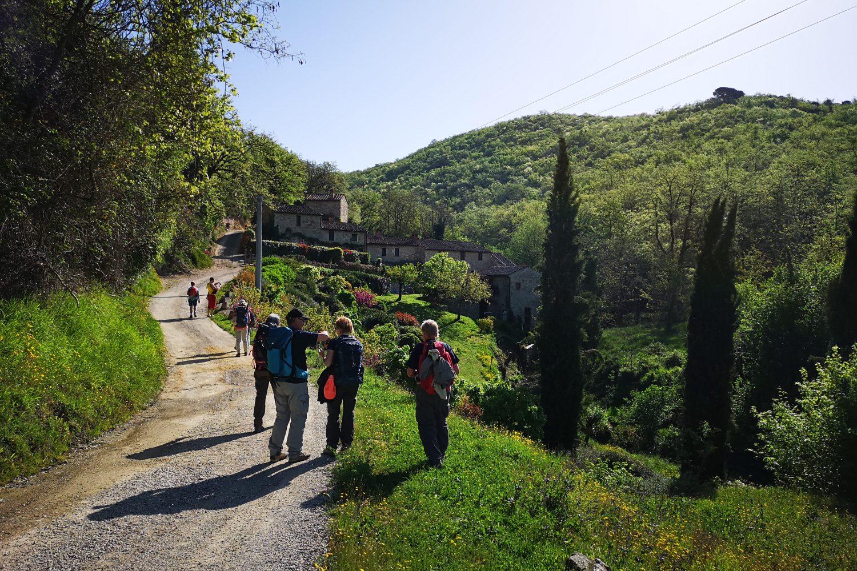 Trekking da Firenze a Siena di Maldavventura