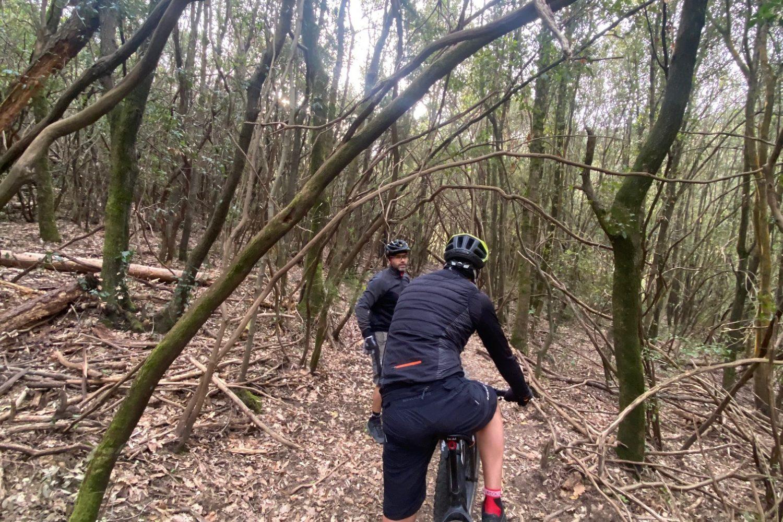 Escursione in E-Bike alla scoperta della Riserva di Calafuria