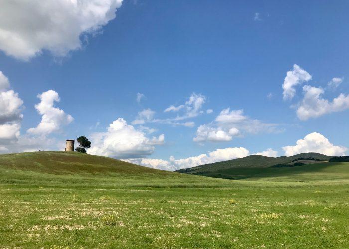 Escursione in E Bike a Bolgheri